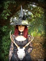 The Power Of The Witch by Estruda