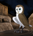 Flight the barn owl. by xiexieZhu
