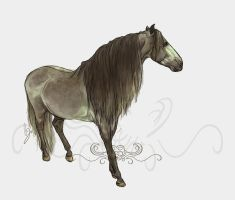Lusitano 2 by howlinghorse