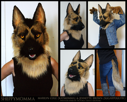Longhair German Shepherd by Katmomma