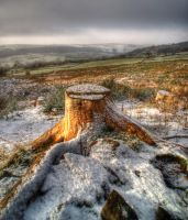 A light dusting by theoden06