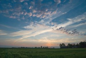 Evening II by Seselgis