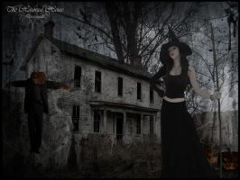 The Haunted House by dress--code