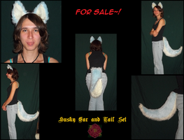 Blue Husky Ear and Tail Set SOLD! by RaziiraoftheDesert
