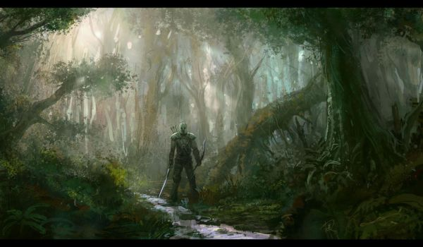 forest by wanbao