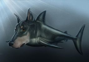DoberFish by YamanTimurhan