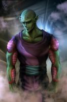Piccolo by clefchan