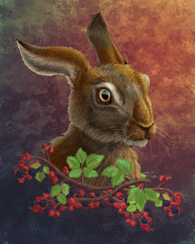 Late Summer Hare by Olivitree