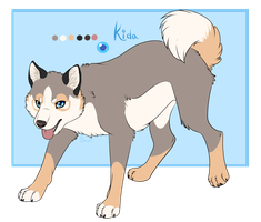 Kida reference by Searii