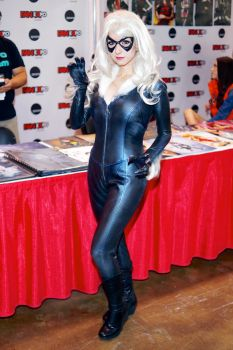 Black Cat By Riddle Fan Expo 2015 #01 by Lightning--Baron