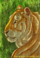 Golden tiger by PhoenixMystery