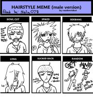 Hairstyle Meme by Neila078
