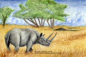 July - Black Rhinoceros by 8TwilightAngel8