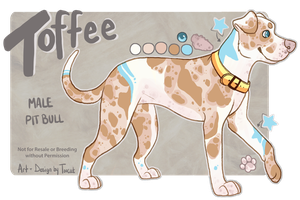 Toffee Ref by Toucat