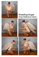 Stock - Kneeling Angel Pack by SenshiStock