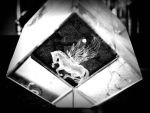 Old Picture - Glass Carved Pegasus by Ashhei