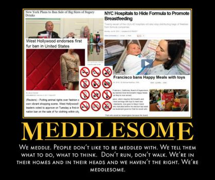Meddlesome by TheWesInAwesome