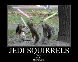 Jedi squirrel by Drack99