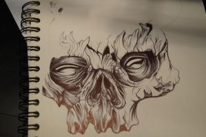skull by Jamestatic