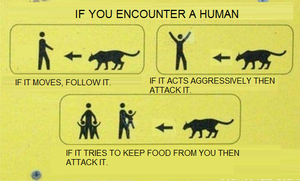 What to do if you encounter a human by PumawithaPC