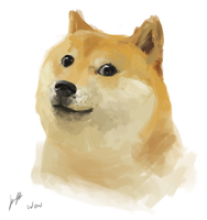 Doge by SpartanK42