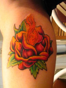 Flaming Rose by Mattoo