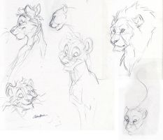 Nuka and Lion sketches by spiritwolf77