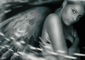 Silver Angel 2012 Edition by BrownzWorX