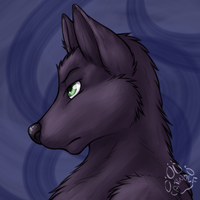 Profile: Drake Werewolf by JasonWerefox