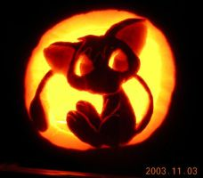 Joey on a Pumpkin by johwee