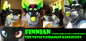 Finnian Fursuit Head by Kiweeroo