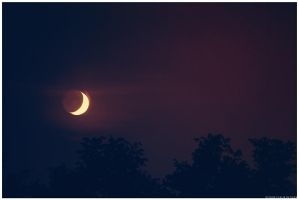 If The Moon Fell Down Tonight by xChemicalWinterx