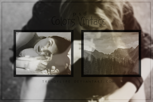 Psd Colors Vintage|TrendyLife by TrendyLife