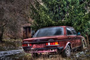 Mercedes V by Logicalx