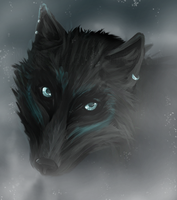 Eyes Cold As Ice by Nakubi