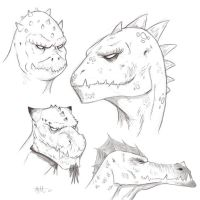 Random Lizard Sketches by umbrafox