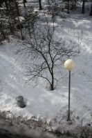 A lamp and a tree by AvaHtH