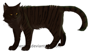 .:Tigerstar:. by Lithestep