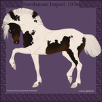 1036 Group Horse Import by Cloudrunner64