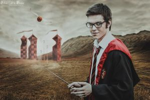 James Potter by Lilta-photo