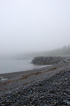 Foggy Day: Cove View 6 by angelaiko
