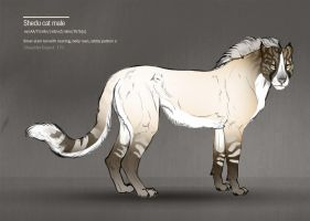 Shedu cat male 171 by Templado
