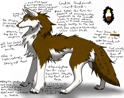godith wolf quad ref by SanguineJustice