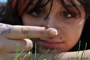 Lady Bug by Charly-Stary-Eyes