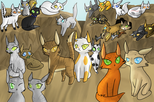Meet SkyClan by pretty-cat
