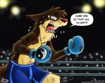 In the ring by Slasher12