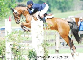 AEC: Show Jumping by zeeplease