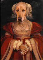Daisy as Ann of Cleves  Henry said she was  a dog by sololupo