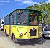 Blue Bird Trolley bus by Mister-Lou