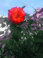 Flor by napsterito